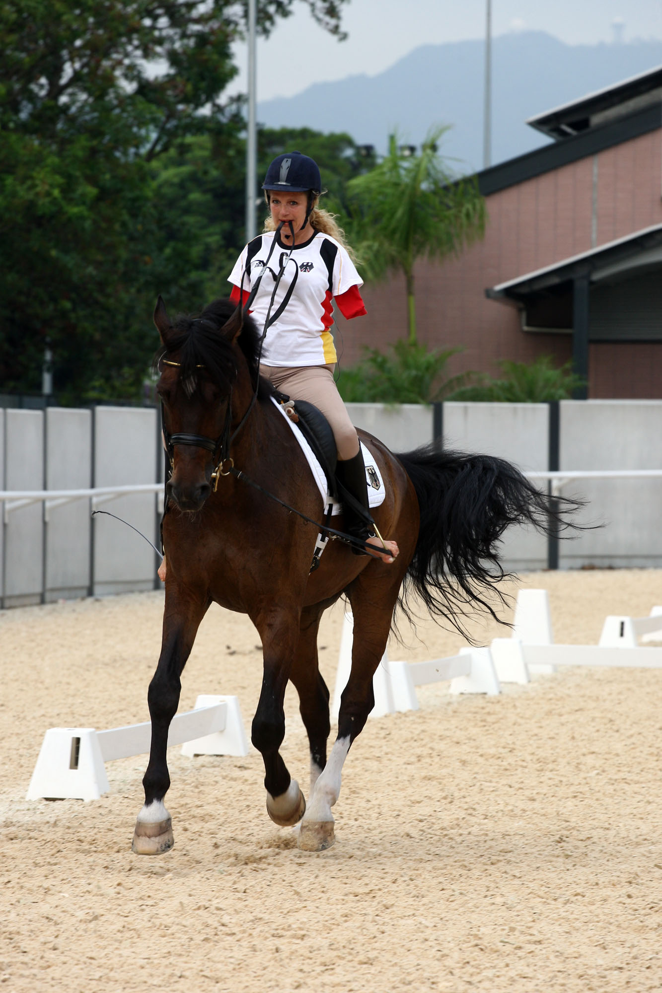 horse branch single women Single-center study of 83 horses with suspensory injuries treated with adipose-derived and/or branch), athletic activity of horses at a single equine.